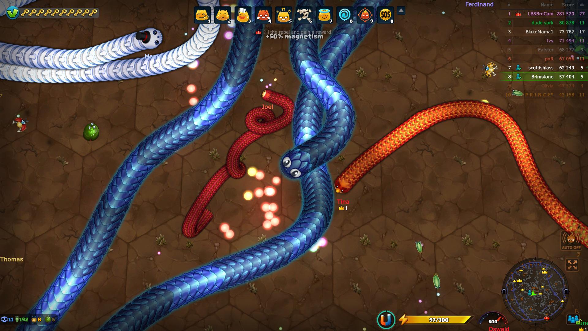 snake-11.jpg