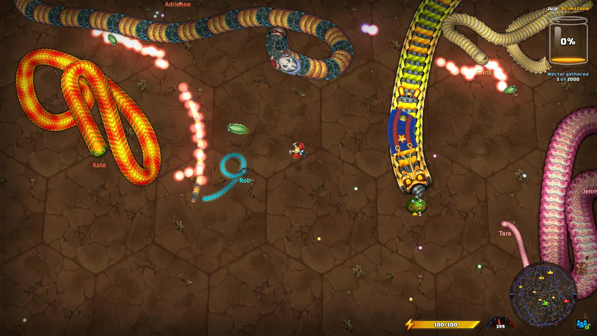 snake-14.jpg