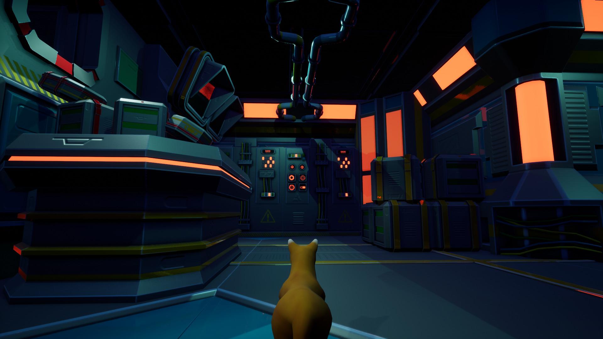 meowspace-3.jpg