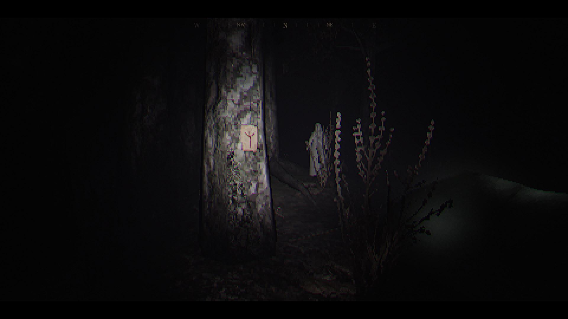 woods-6.jpg